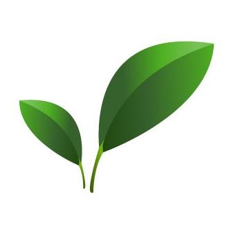 eco-friendly-green